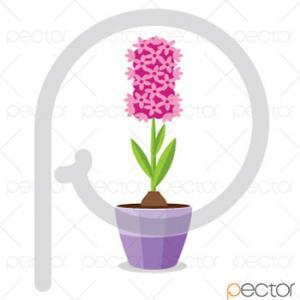 وکتور گل سنبل