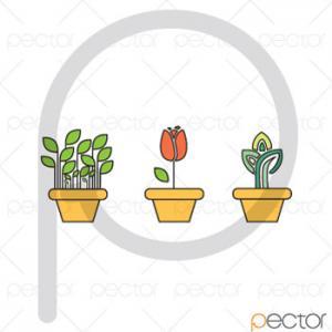 وکتور گل لاله و گلدان