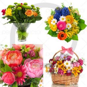 گل عید نوروز