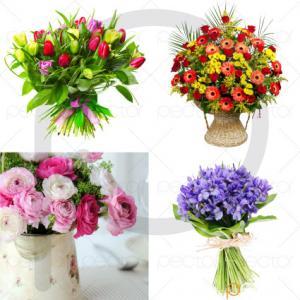 عکس گل با کیفیت بالا