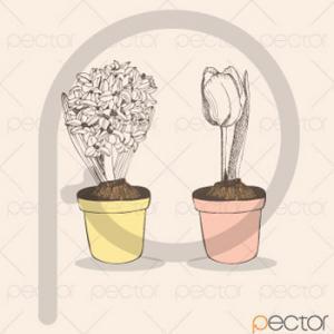 وکتور گلدان
